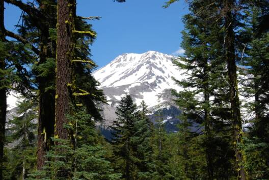Mystical, Magical, Mt. Shasta, Northern California